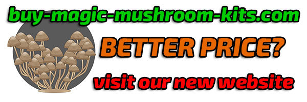 easy grow magic shrooms with our pure mycelium magic mushroom kits